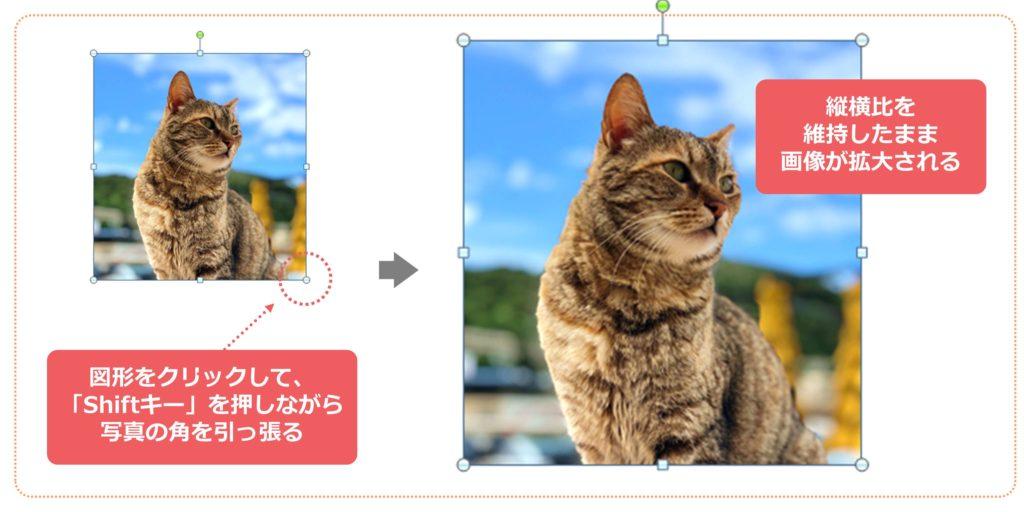 豆知識!縦横比を維持したまま画像を拡大する方法