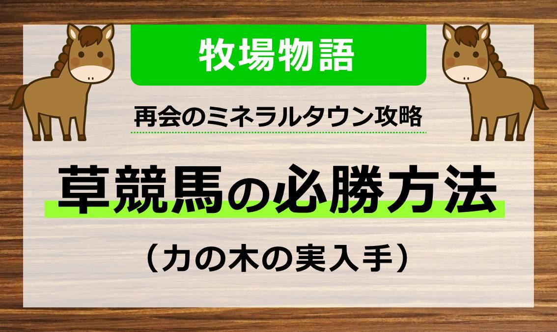 牧場物語_再会のミネラルタウン_草競馬必勝方法(力の木の実入手)